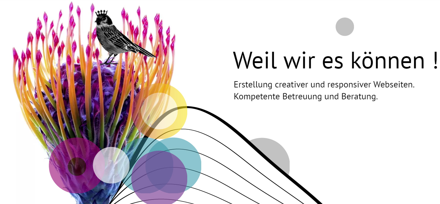 HOMEPAGES4U-Webdesign in der Pfalz